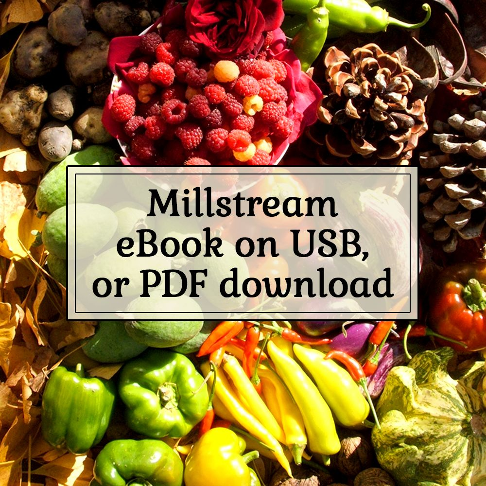 Millstream Not Mainstream eBook on USB