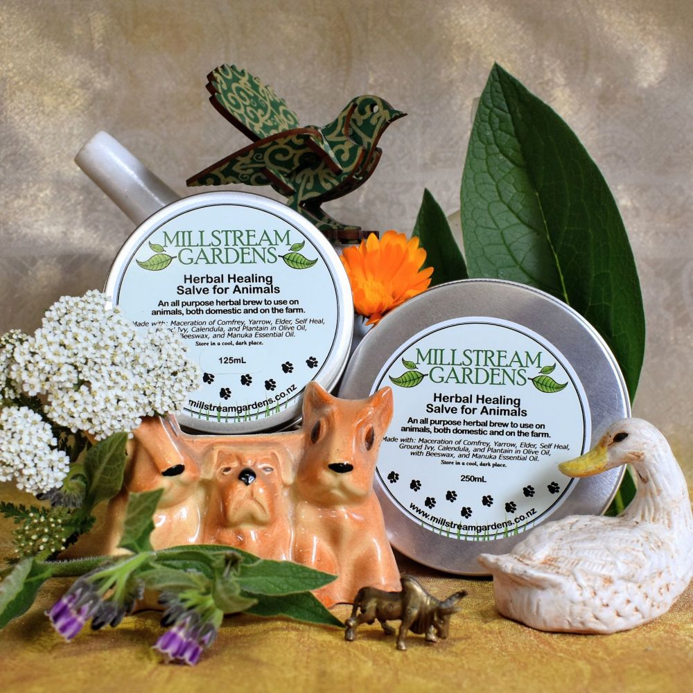 Herbal Healing Salve For Animals
