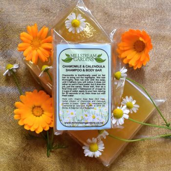 Shampoo and Body Bar: Chamomile and Calendula