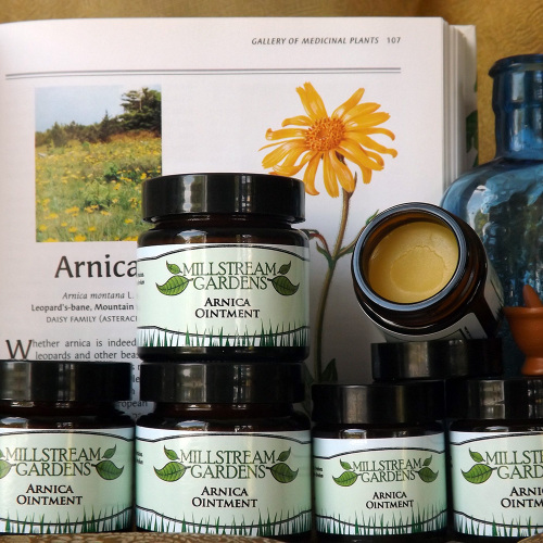 Arnica Ointment