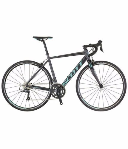Scott Contessa Speedster 35 2018
