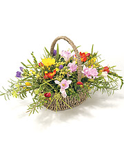 Mixed Freesia Basket.