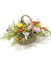 Mixed Freesia Basket.