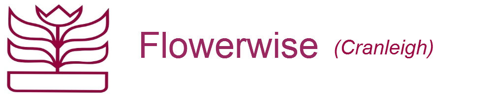 Flowerwise, site logo.