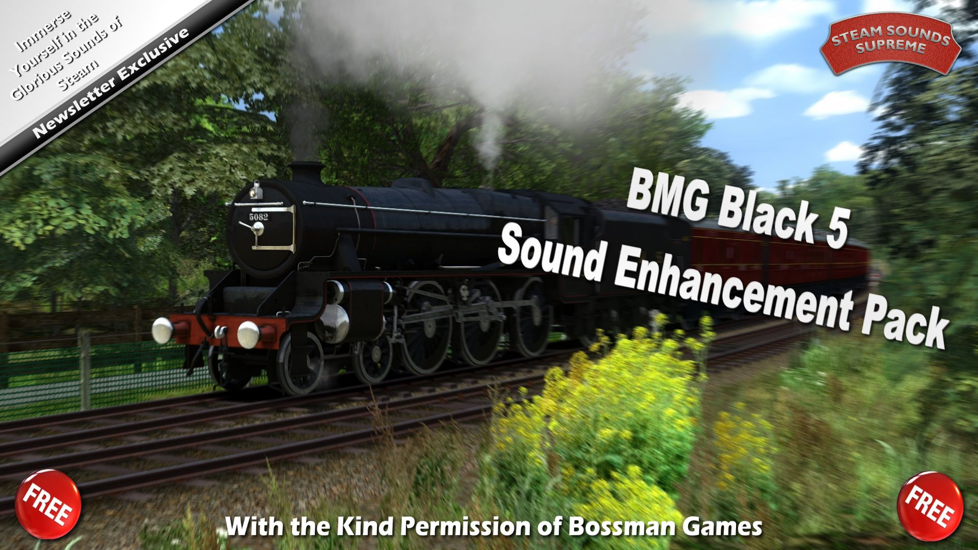 BMG-B5-SEP01.jpg