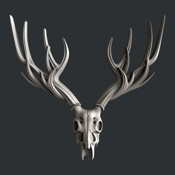 Deer head Skull Large