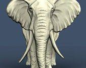 """Bodhi"" Elephant"