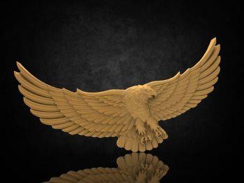 """""""Ari"""" Eagle"""
