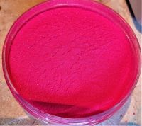 Little Pixie Pigment 25g Deep Red