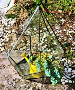 Glass Terrarium Workshop Copper Foiling 12th/13th June 2021