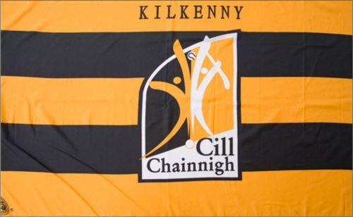 kilkenny flag