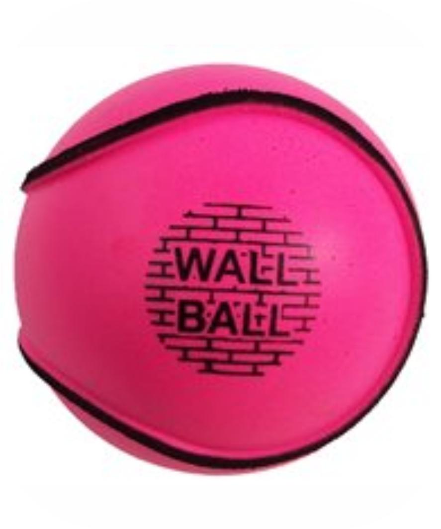 Sliotar Wall Ball Pink