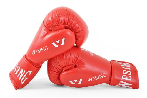 WESING AIBA Approved Gloves