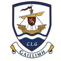 Galway GAA Flag