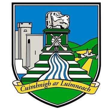 Limerick GAA Flag