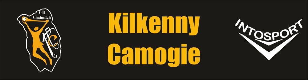 KILKENNY CAMOGIE BANNER