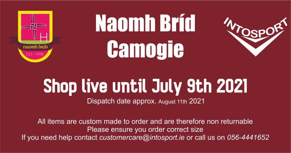 NAOMH BRID CAMOGIE BALLYRAGGET BIG BANNER