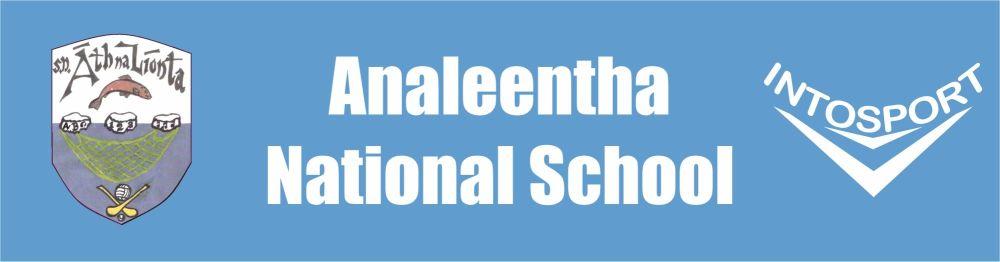 ANALEENTHA NS - CORK SCHOOL HALF ZIP BANNER