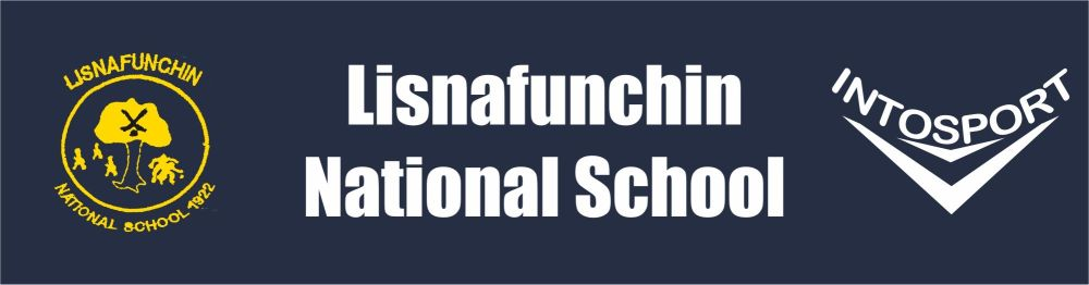 Lisnafunchin National SchooL - KILKENNY - BANNER