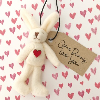 Bunny love you gift