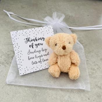 Bear Hug Miniature Gift