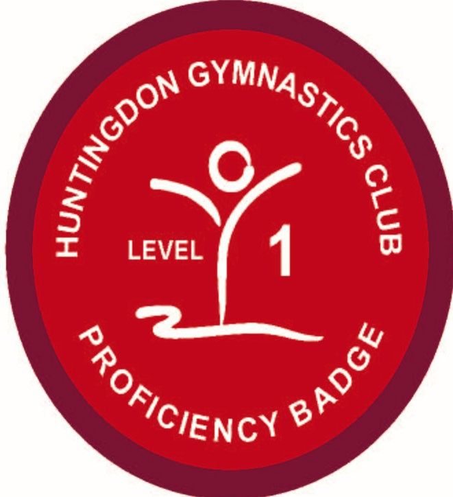 Badge Level 1