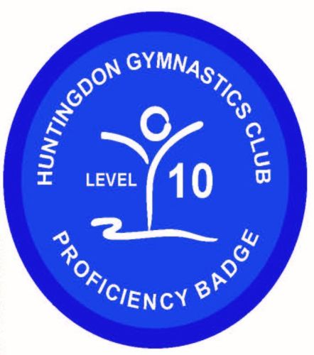 Badge Level 10