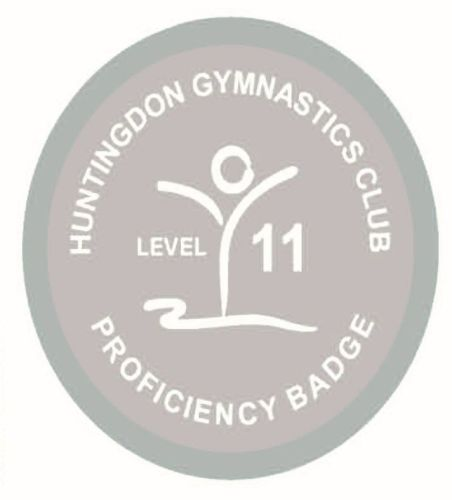Badge Level 11