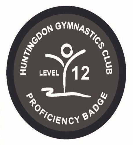 Badge Level 12