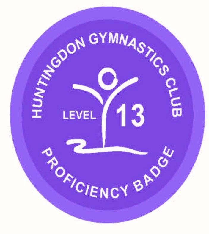 Badge Level 13