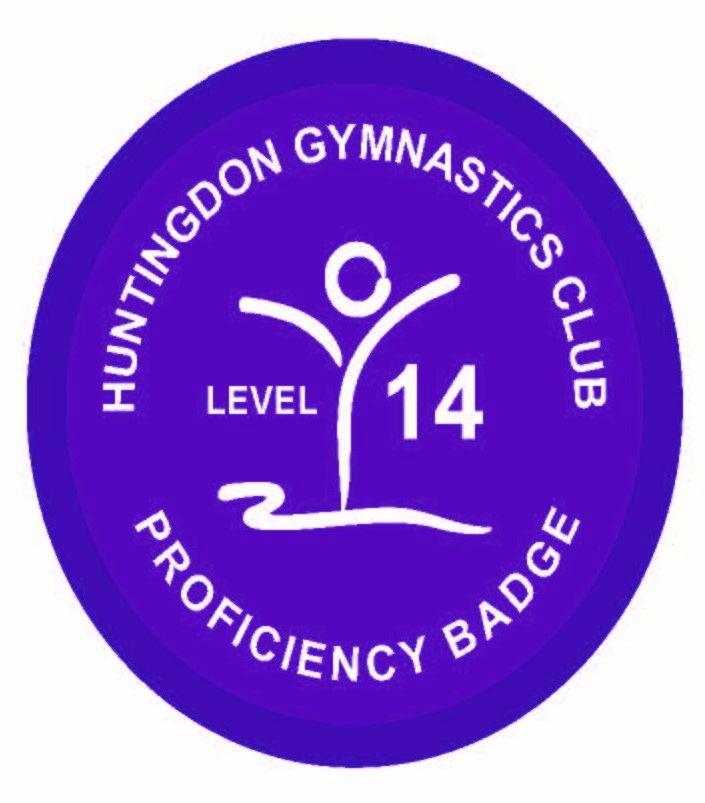 Badge Level 14