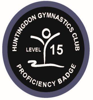Badge Level 15
