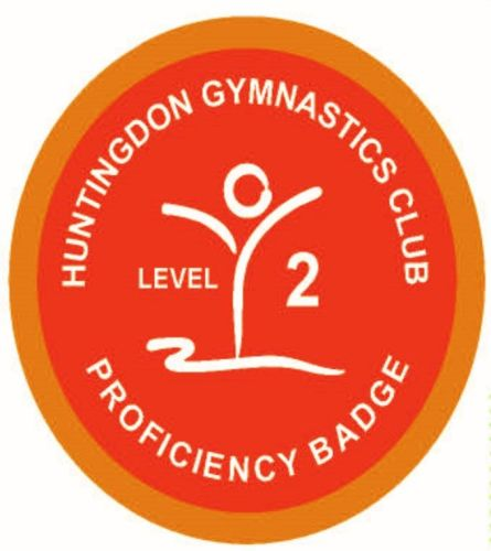 Badge Level 2