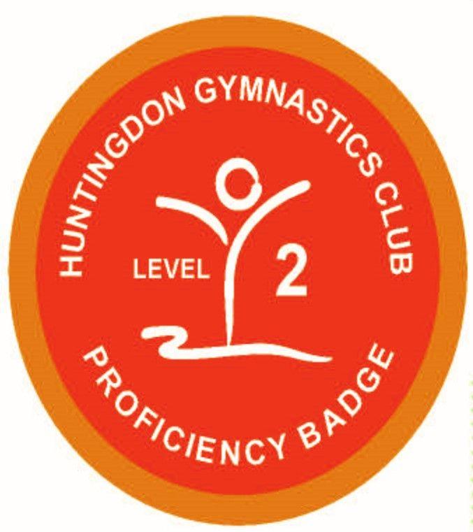 Badge Level 2