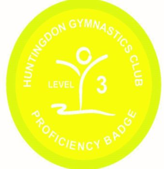 Badge Level 3