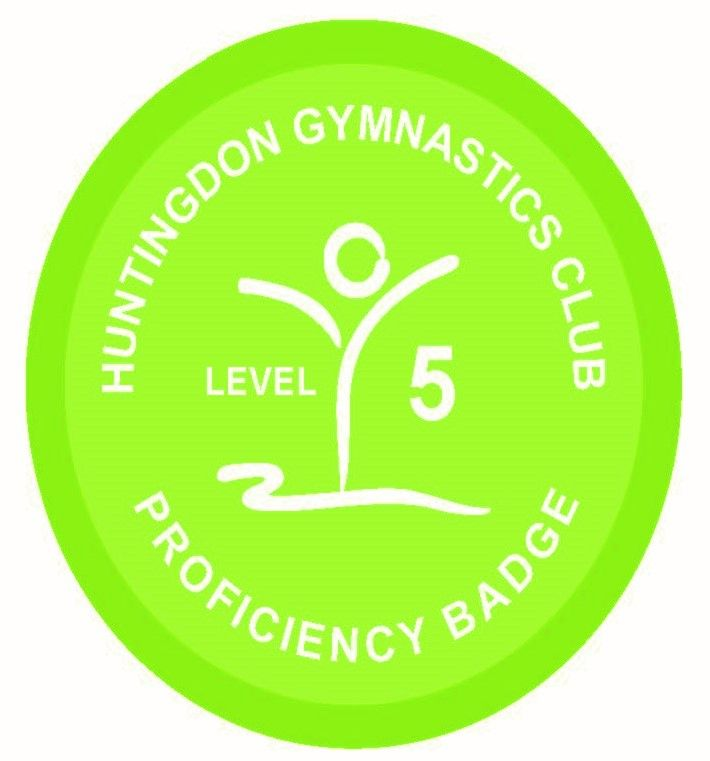 Badge Level 5