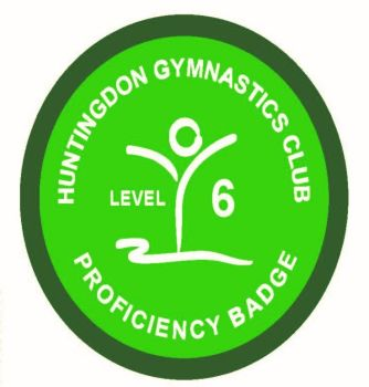 Badge Level 6