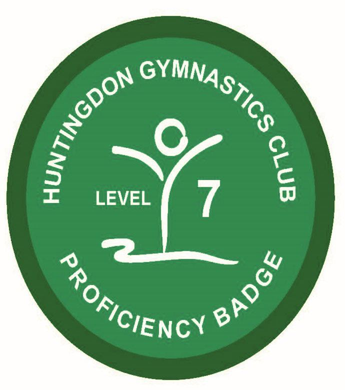 Badge Level 7