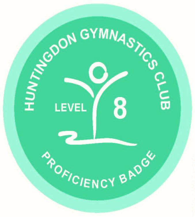 Badge Level 8