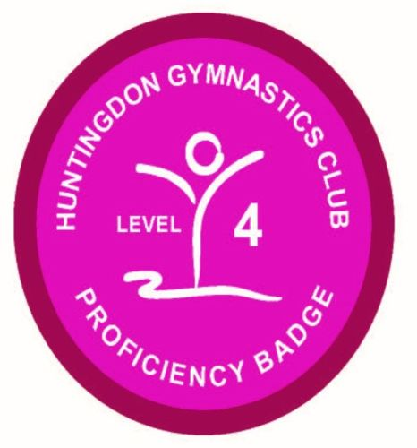 Badge Level 4