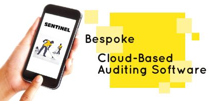 Sentinel-Cloud-Based Auditing Software