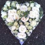 Open White Rose Heart