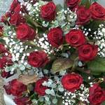 20 Red Roses & Gyp Bouquet