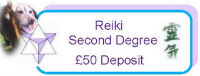 Reiki 2 - Second Degree Course Deposit