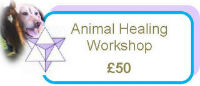 Animal Healing - Healing Workshop