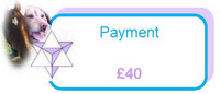 Payment of £40