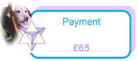 Payment of £65
