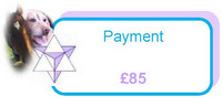Payment of £85