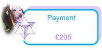 Payment of £205