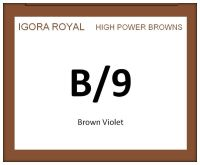 Igora Royal High Power Browns 60ml B/9